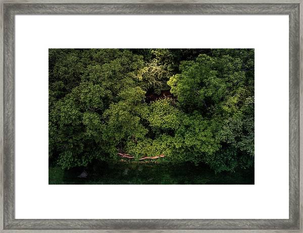 Hidden Framed Print