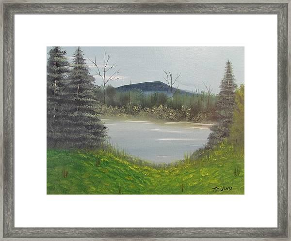 Hidden Pond  Framed Print