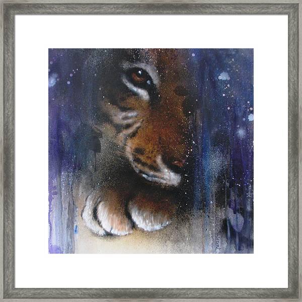 Hidden Tiger Framed Print