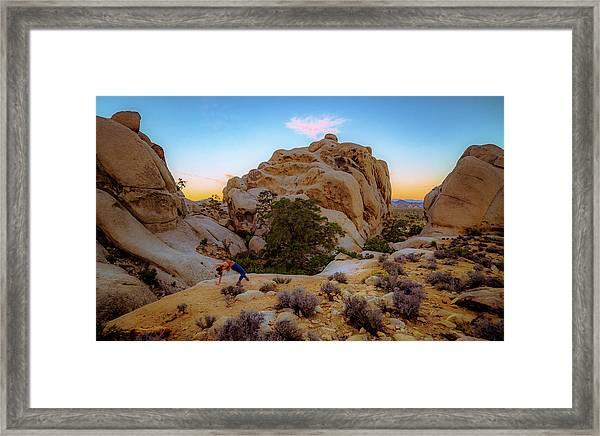 High Desert Pose Framed Print
