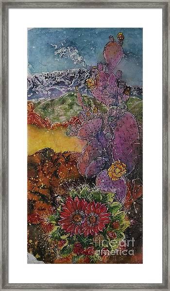 High Desert Spring Framed Print