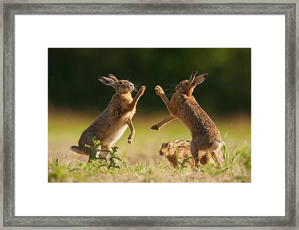 High Five Framed Print