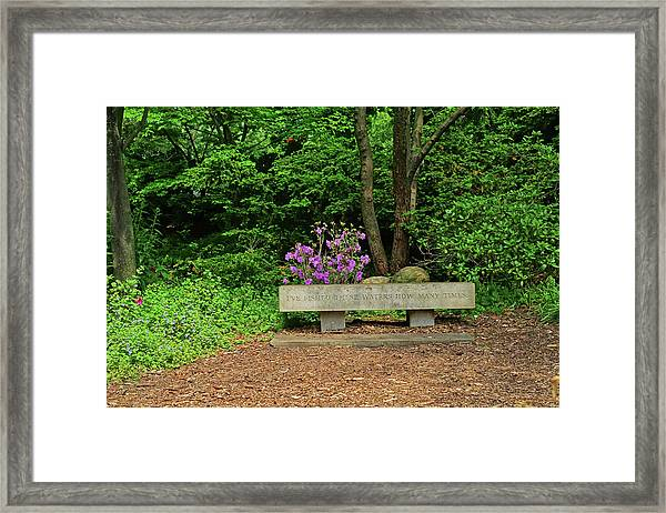 Highland Park Poet S Garden Rochester Ny Bench Photograph By Toby