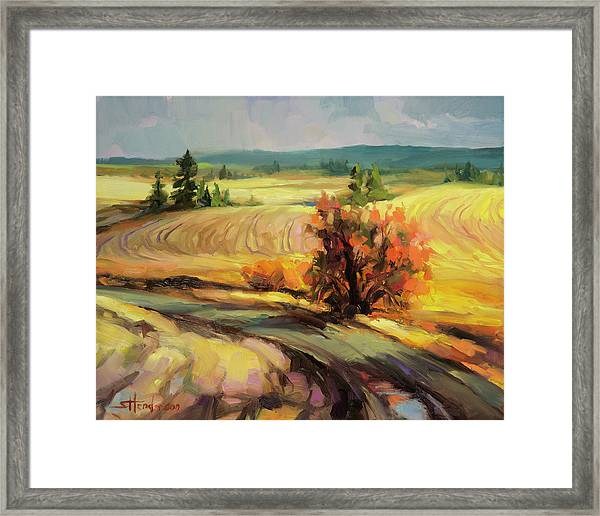 Highland Road Framed Print