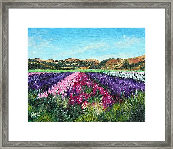 Highway 246 Flowers 3 Framed Print