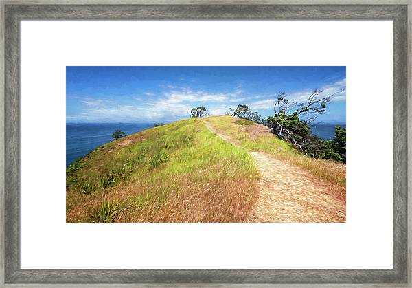Hike To Whaler's Point Great Barrier Island New Zealand Framed Print