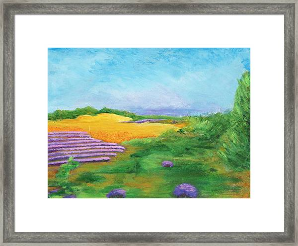 Hill Country Beauty Framed Print