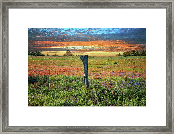 Hill Country Heaven Framed Print