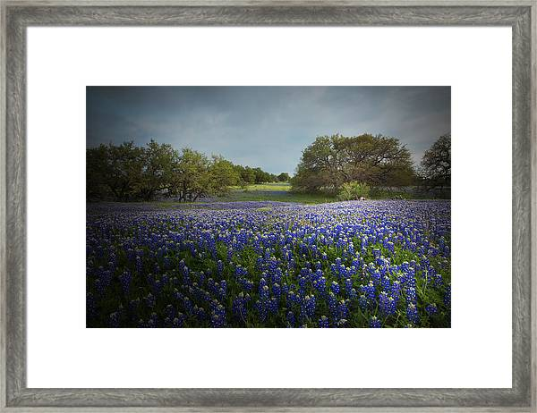 Hill Country Ranch Framed Print