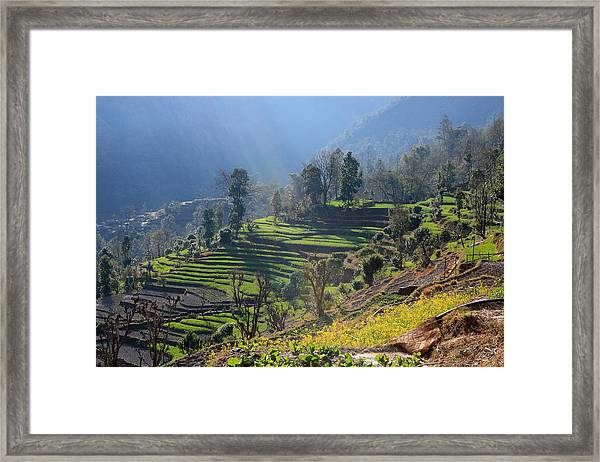 Himalayan Stepped Fields - Nepal Framed Print