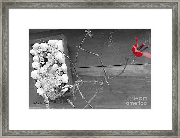 Hints Of Red Framed Print