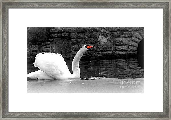 His Majesty On Ice Framed Print