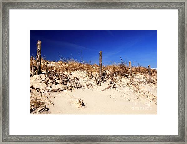 Holgate Beach Dune On Long Beach Island Framed Print by John Rizzuto