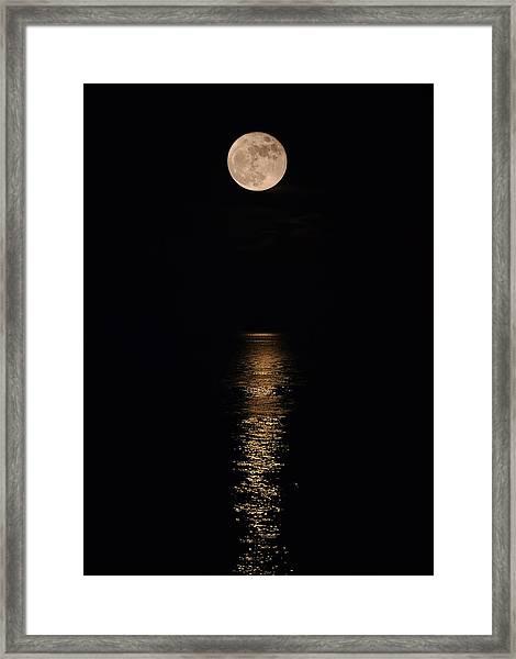Holiday Magic - Lunar Art Framed Print