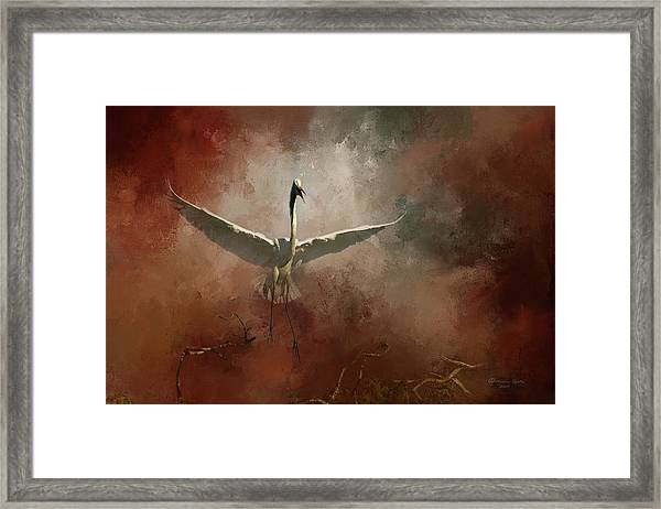 Home Coming Framed Print