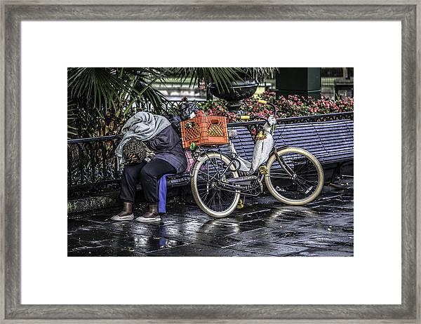 Homeless In New Orleans, Louisiana Framed Print