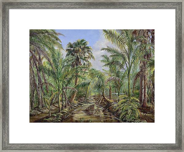 Homestead Tree Farm Framed Print