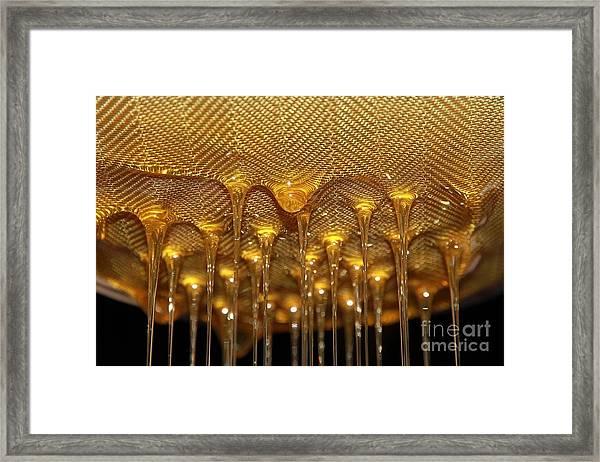 Honey Drip Framed Print