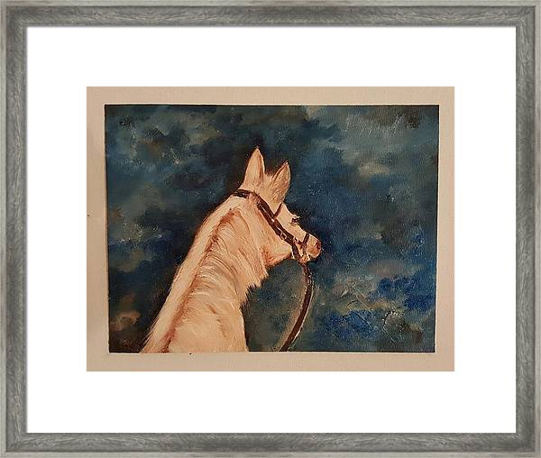 Honey Palomino Horse 28 Framed Print