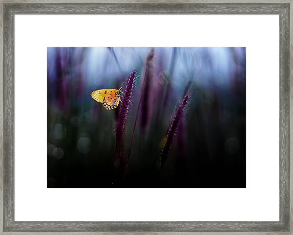 Hope Framed Print by Erwin Astro