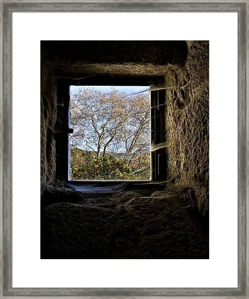 Hope Framed Print by Ines Montenegro