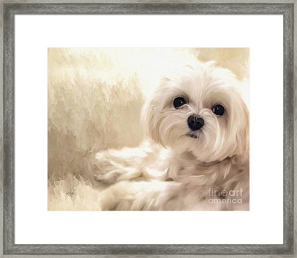 Framed Print featuring the digital art Hoping For A Cookie by Lois Bryan