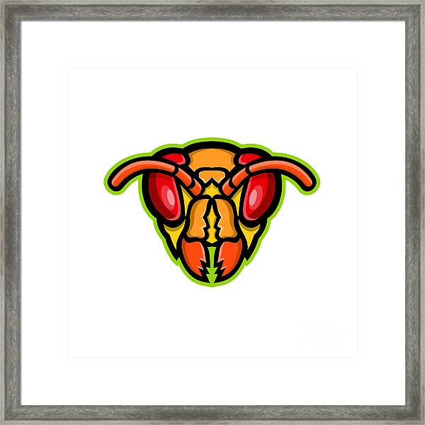 Hornet Head Mascot Framed Print