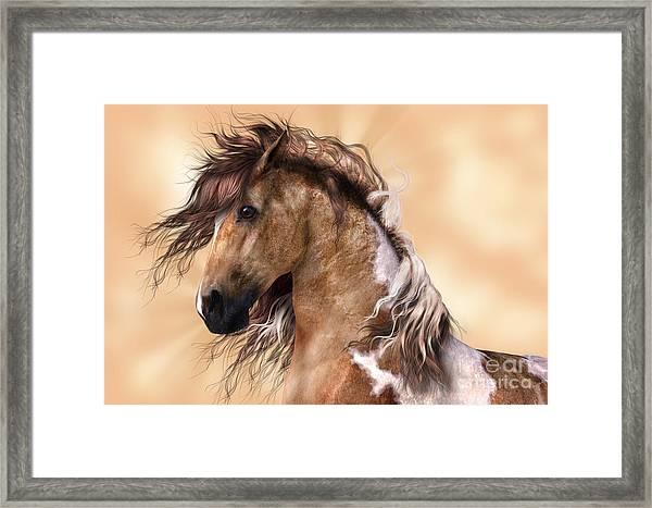 Horse Brown And White Paint Framed Print