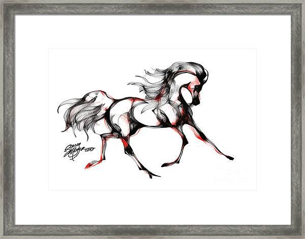 Horse In Extended Trot Framed Print