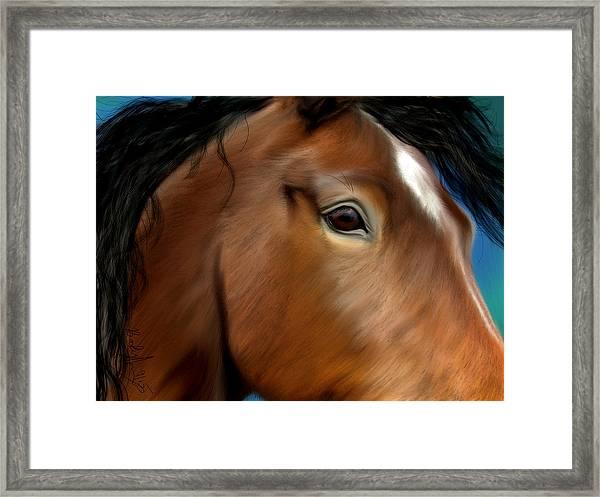Horse Portrait Close Up Framed Print