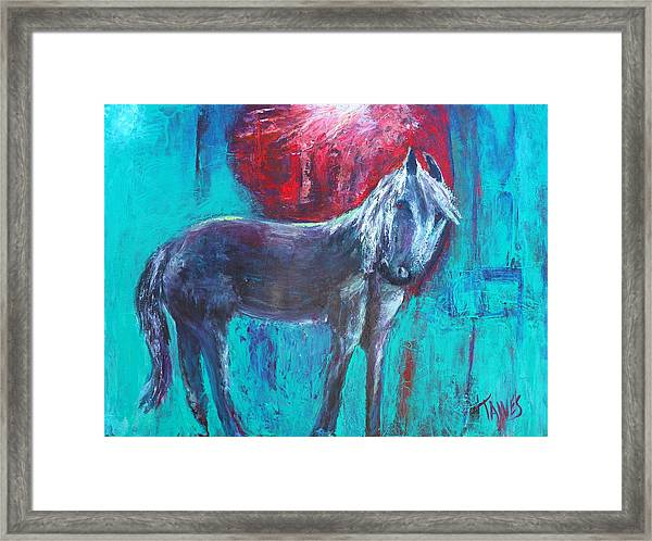 Horse With No Tame Framed Print