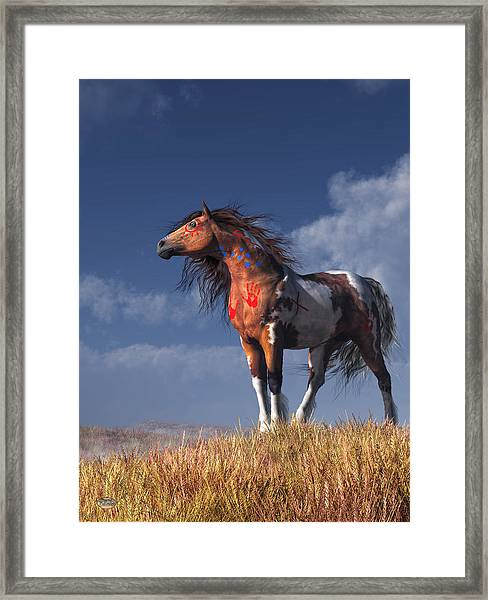 Horse With War Paint Framed Print
