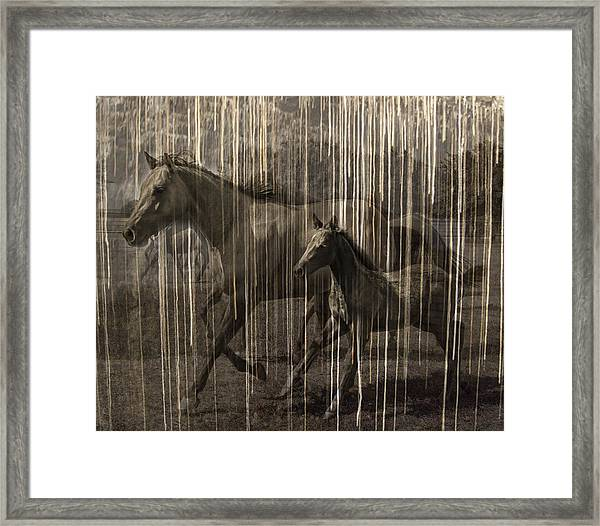 Horses Abstract Mare And Foal Framed Print by Karla Beatty