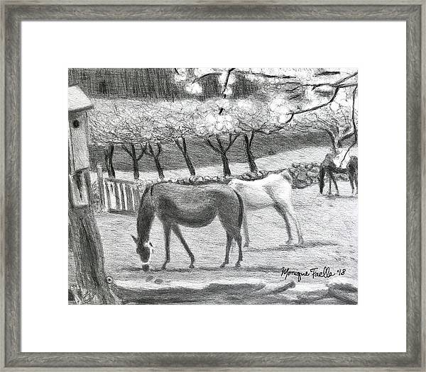 Horses And Trees In Bloom Framed Print