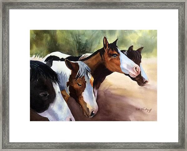 Horses At The Ranch Framed Print