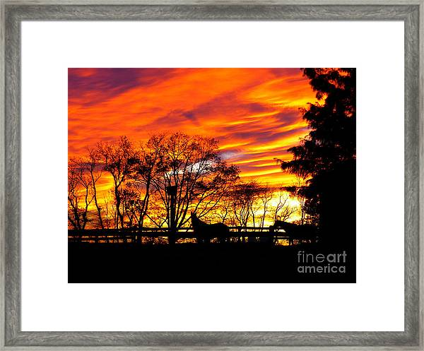 Horses Under A Painted Sky Framed Print