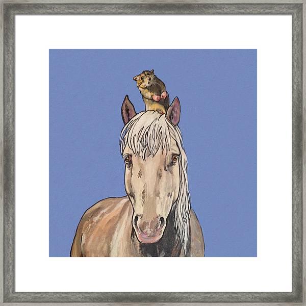 Hortense The Horse Framed Print