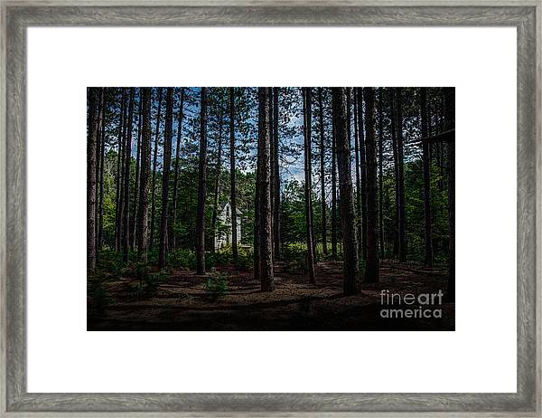 House In The Pines Framed Print