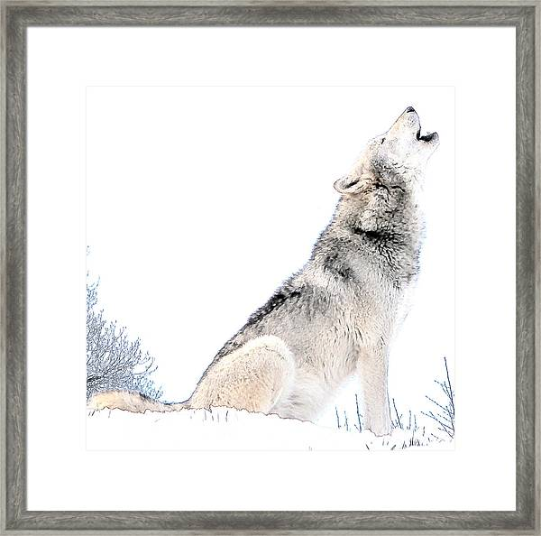 Howling Wolf 1 Framed Print