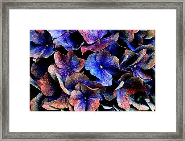 Hues Framed Print
