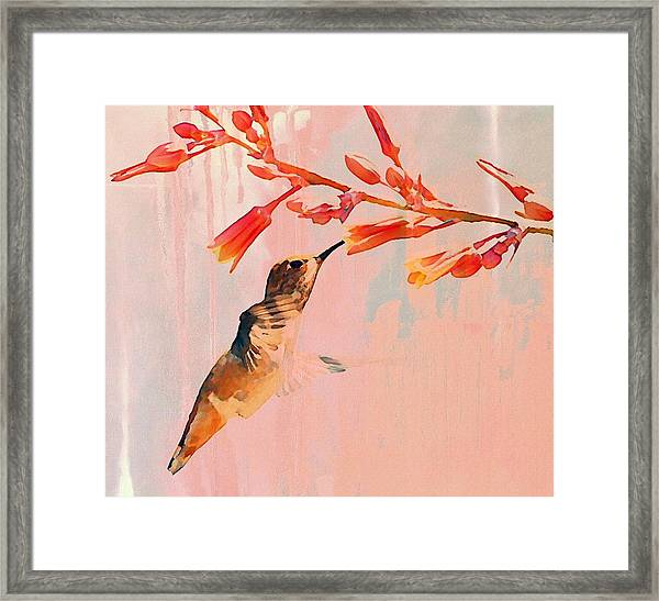 Hummer Art Framed Print