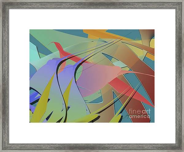 Hummingbird Convention Framed Print