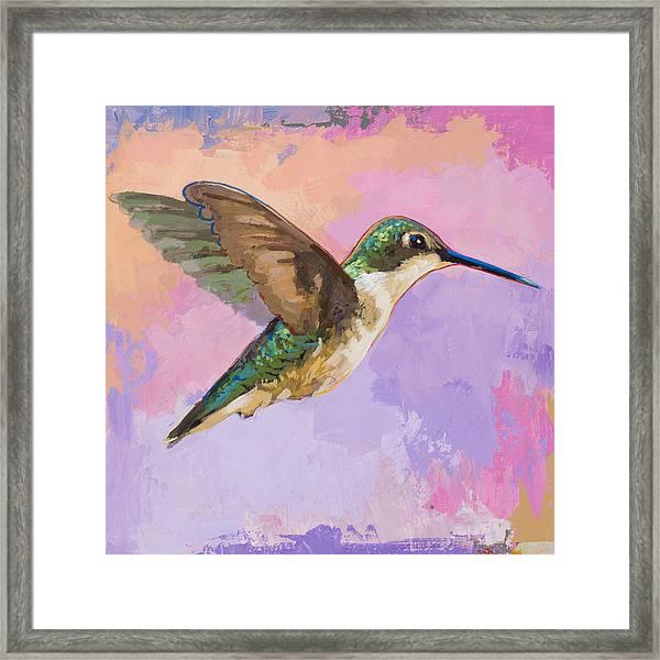 Hummingbird #2 Framed Print
