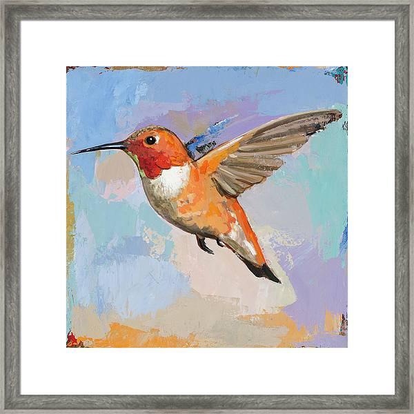 Hummingbird #7 Framed Print