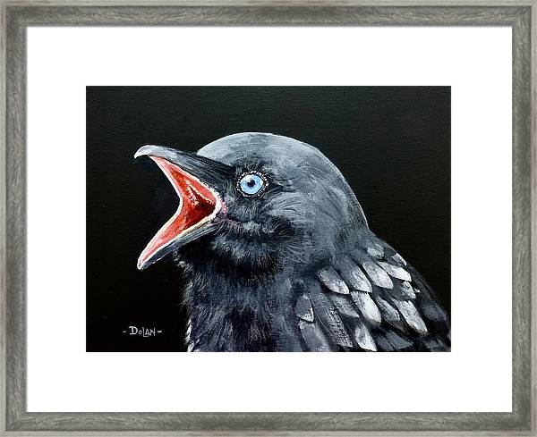 Hungry Baby Raven Framed Print