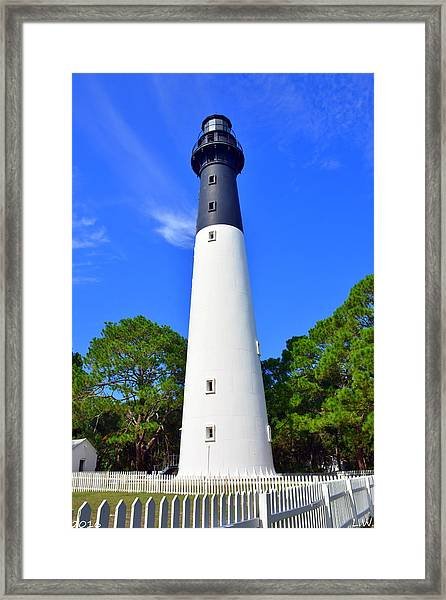 Hunting Island Lighthouse Beaufort Sc Framed Print