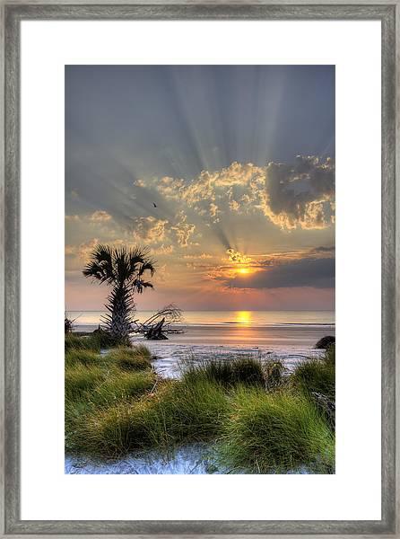 Hunting Island Sc Sunrise Palm Framed Print