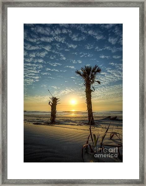 Hunting Island State Park Beach Sunrise Framed Print