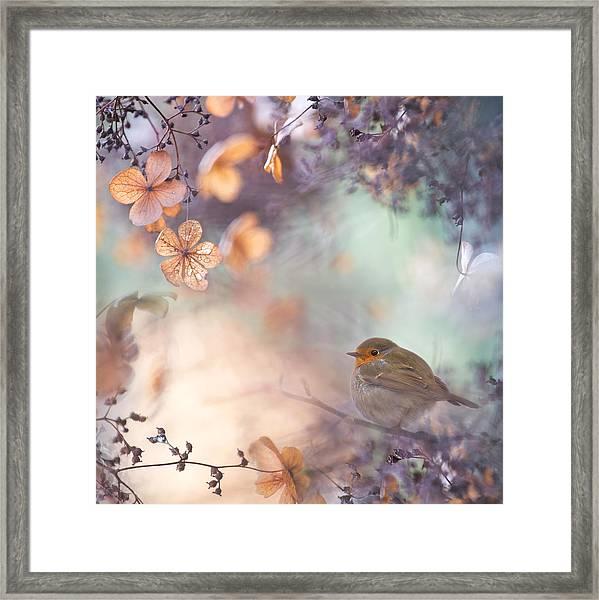 Hydrangea Fantasy Framed Print