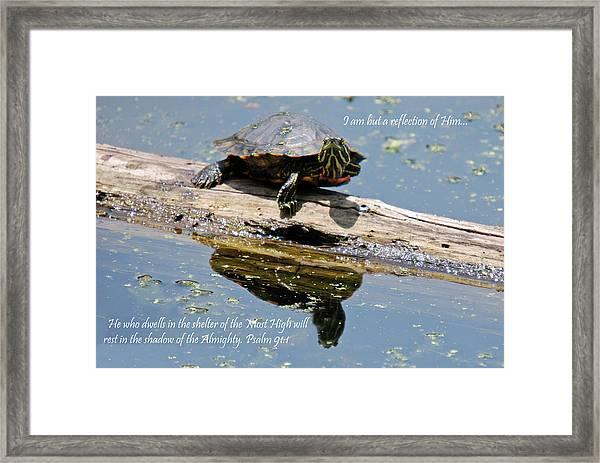 I Am But A Reflection Framed Print by Teresa Blanton